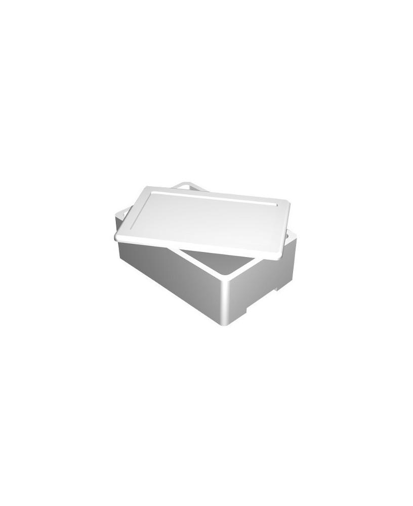 scatola refrigerata